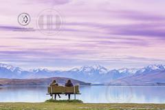 NZ17_wright11076