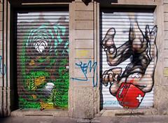 IMGP6699 Street art