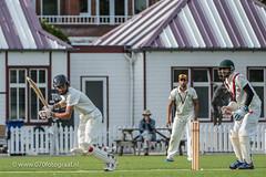 070fotograaf_2017082020170820_Cricket HCC1 - ACC 1_FVDL_Cricket_3838.jpg