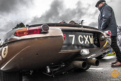 Goodwoodrevival cinecars-208