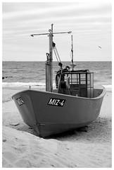 MIZ-4