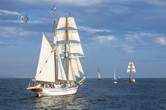 The Tall Ships festival in Dana Point Harbor kicks off September 8, 2017.