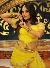 Indian Actress Ramya Hot Sexy Images Set-1 (81)
