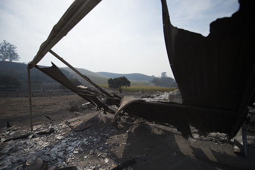 Survived vineyard can be seen through the remains of a burnt house in Sonoma County, California after recent devastating fire. The wineries in the area are known for producing wine and wine tasting, October 17, 2017.