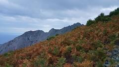Creasta muntelui Saos spre est