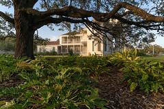 Historic Hamilton House