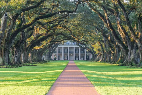 "Oak Alley Plantation • <a style=""font-size:0.8em;"" href=""http://www.flickr.com/photos/132142211@N05/37473366096/"" target=""_blank"">View on Flickr</a>"