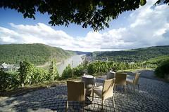 Romantic Outlook of Vineyards in Germany