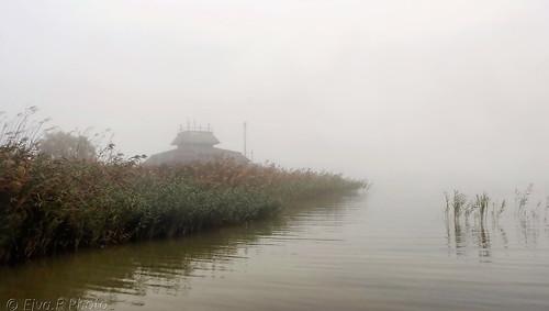 Fog Autumn Lake / Köd Ősz Tó