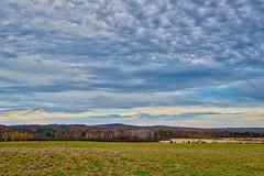 2017-10-21 365 Foothill farmlands