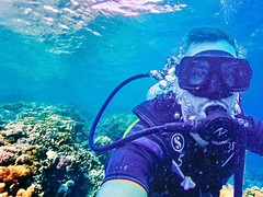 Diving at ABC Bay, Tioman, Malaysia