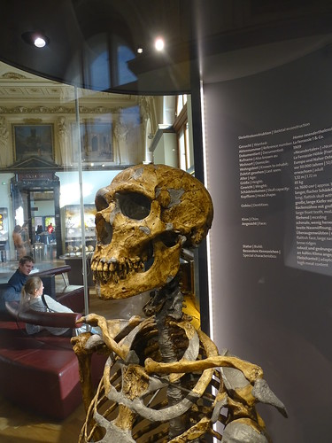 """Naturhistorisches Museum Wien • <a style=""""font-size:0.8em;"""" href=""""http://www.flickr.com/photos/160223425@N04/38780526122/"""" target=""""_blank"""">View on Flickr</a>"""