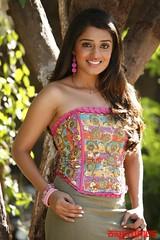 Kannada Times_Nikita Thukral_064