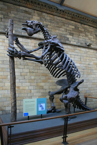 """Natural History Museum London • <a style=""""font-size:0.8em;"""" href=""""http://www.flickr.com/photos/160223425@N04/25023041318/"""" target=""""_blank"""">View on Flickr</a>"""