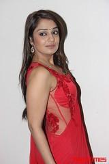 Kannada Times_Nikita Thukral_100