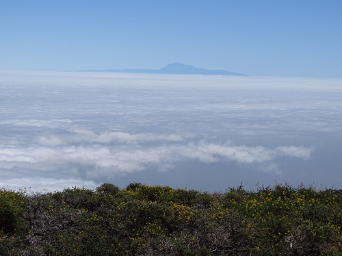 """La Palma • <a style=""""font-size:0.8em;"""" href=""""http://www.flickr.com/photos/160223425@N04/38139588364/"""" target=""""_blank"""">View on Flickr</a>"""