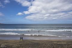 Preparadas para acariciar las olas...