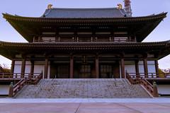 夕暮れ増上寺