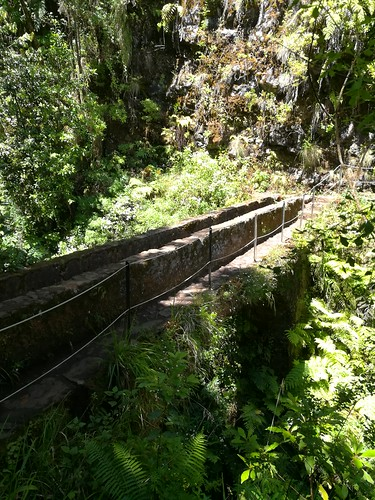 """Madeira Levada hike • <a style=""""font-size:0.8em;"""" href=""""http://www.flickr.com/photos/160223425@N04/24963570898/"""" target=""""_blank"""">View on Flickr</a>"""