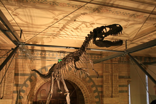 """Natural History Museum London • <a style=""""font-size:0.8em;"""" href=""""http://www.flickr.com/photos/160223425@N04/27118112679/"""" target=""""_blank"""">View on Flickr</a>"""