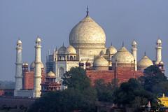 Taj from Agra fort, across Yamuna