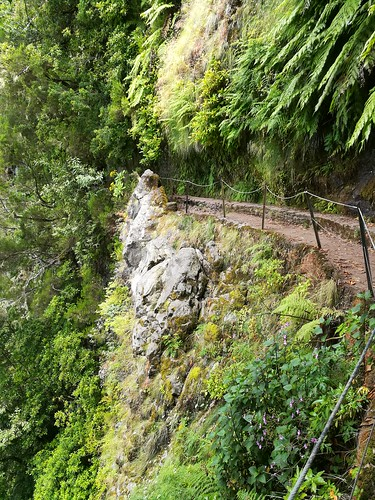 """Madeira Levada hike • <a style=""""font-size:0.8em;"""" href=""""http://www.flickr.com/photos/160223425@N04/27059841249/"""" target=""""_blank"""">View on Flickr</a>"""