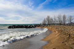 Toronto's Beaches