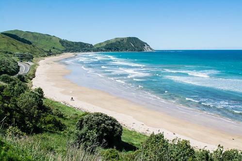 Nouvelle Zélande- Pacific Coast Highway