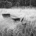 Abandoned skiff