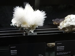 """Museu Blau Barcelona Minerals • <a style=""""font-size:0.8em;"""" href=""""http://www.flickr.com/photos/160223425@N04/37921121225/"""" target=""""_blank"""">View on Flickr</a>"""