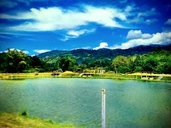 https://maps.google.com/?cid=2310701910495094069&hl=en&gl=gb #Lake #trip #travel #holiday #traveling #tree #Asian #Malaysia #negerisembilan #holidayMalaysia #travelMalaysia #nature #大自然 #旅行 #度假 #亚洲 #马来西亚 #森美兰 #马来西亚度假 #自游马来西亚 #Lenggeng #湖 #water #水 #bluesk