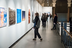 "Exposition Joël Meyerowitz ""Where I find myself"" au Botanique"