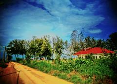 https://maps.google.com/?q=3.195100,101.307900&hl=zh&gl=cn #travel #holiday #sky #tree #nature #Asian #Malaysia #Selangor #PantaiRemis #travelMalaysia #holidayMalaysia #旅行 #度假 #天空 #树木 #大自然 #亚洲 #马来西亚 #雪兰莪 #马来西亚度假 #马来西亚旅行 #自游马来西亚