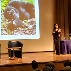 Diana Fleischman giving the Darwin Day lecture 2018
