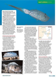 26---diver_-madagascar-diving_001