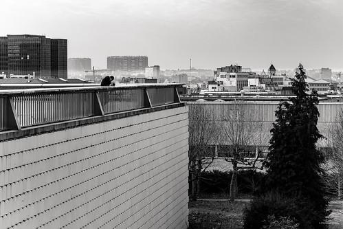 Bruxelles / Cité Administrative