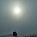 Trots snöfall är solen STARK nog att lysa genom