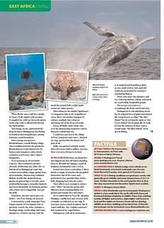 26---diver_-madagascar-diving_002