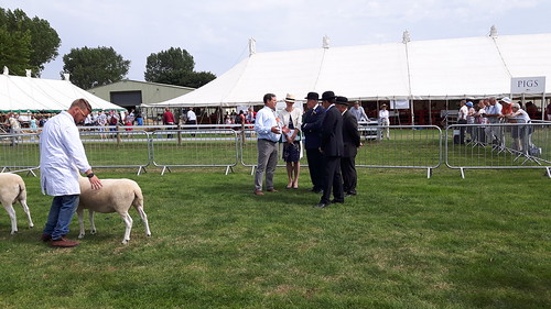 Graham Fort judging Licolnshire show 2017