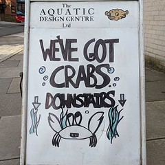 Crabs Downstairs