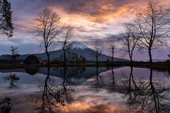Morning glow over Mt Fuji