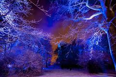 Turku Castle and Luminous Finland 100 Light Art Fusion III