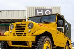 Hoog-8