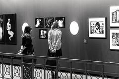 "Exposition Botanique ""Eyes Wild Open"""