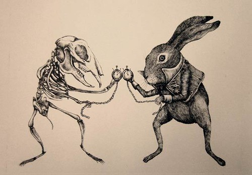 """lepus-timidus-ericailcane • <a style=""""font-size:0.8em;"""" href=""""http://www.flickr.com/photos/15706268@N04/40747854832/"""" target=""""_blank"""">View on Flickr</a>"""