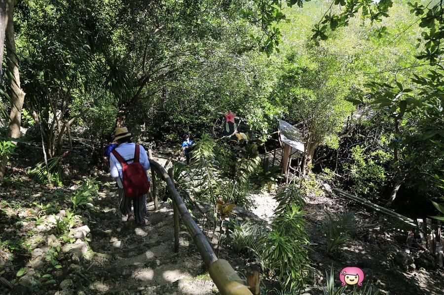 [薄荷島景點]Bohol,Anda區熱門旅遊景點│Lamanok Island.神祕的冒險小島.充滿著人文與歷史.紅樹林保護區 @VIVIYU小世界