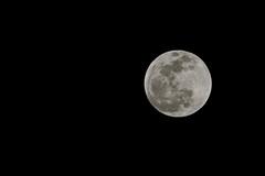 Moon over north Alabama