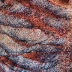 Wonderful colors of the sandstone of Petra
