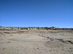 Bisti/De-Na-Zin Wilderness