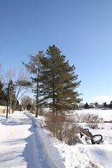 Lake Beaumaris, Edmonton